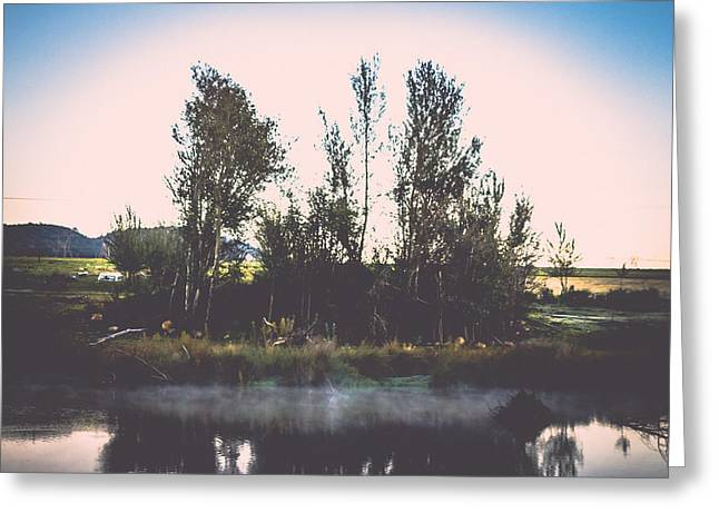 Photo Art Gallery Greeting Cards - Do you reflect Greeting Card by George Fivaz