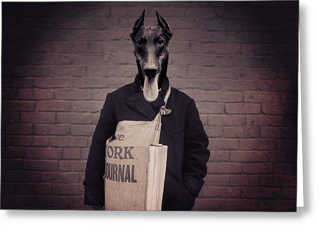 Doberman Paperboy Greeting Card by Aged Pixel