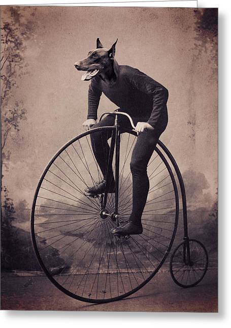 Doberman Velocipede Greeting Card by Aged Pixel