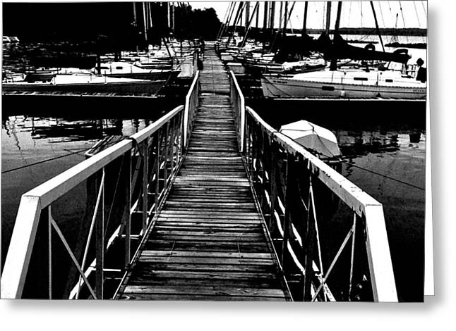 Docked Sailboats Greeting Cards - Dock and Sailboats Greeting Card by Kevin Mitts