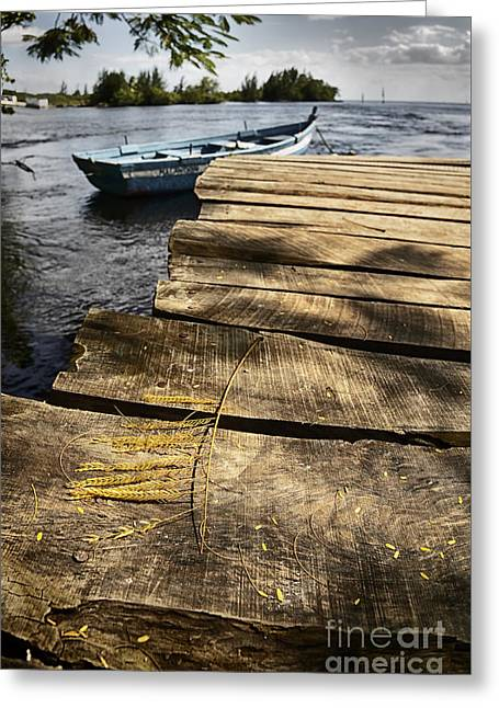 Boats At Dock Greeting Cards - Dock details Greeting Card by Jose  Rey
