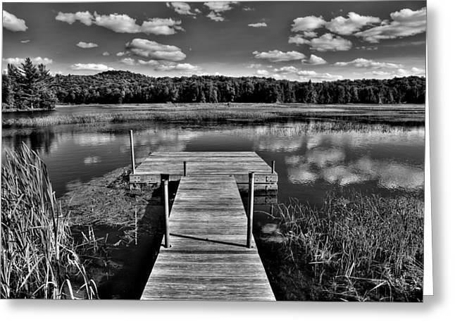 Old And New Greeting Cards - Dock on the Moose River Greeting Card by David Patterson