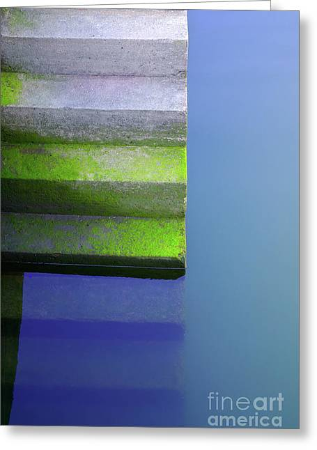 Wet Greeting Cards - Dock Stairs Greeting Card by Carlos Caetano