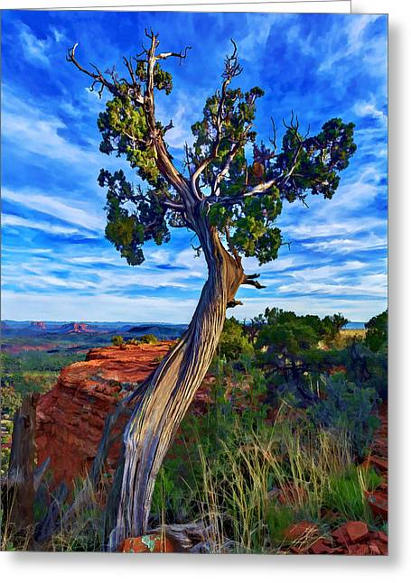 Colorful Cloud Formations Greeting Cards - Doe Mountain Juniper Greeting Card by Bill Caldwell -        ABeautifulSky Photography