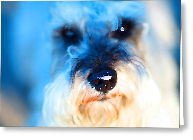 Dog 2 . Photo Artwork Greeting Card by Wingsdomain Art and Photography