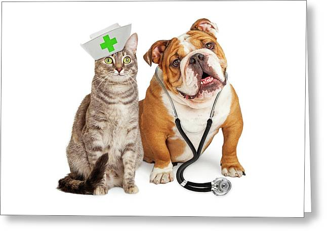 Dog And Cat Veterinarian And Nurse Greeting Card by Susan Schmitz