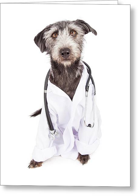 Mutt Greeting Cards - Dog Dressed As Veterinarian Greeting Card by Susan  Schmitz