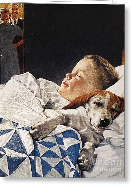 Dog Food Ad, 1956 Greeting Card by Granger