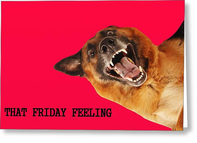 Zoology Greeting Cards - Dog Greeting Card by Frances Lewis