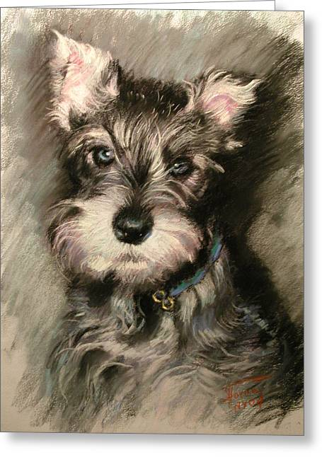 Portrait Pastels Greeting Cards - Dog in Blue Collar Greeting Card by Ylli Haruni