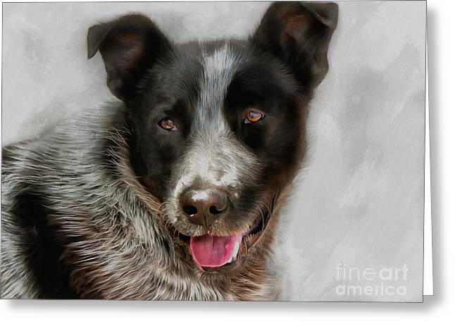 Best Friend Greeting Cards - Dog Jack Greeting Card by Sergey Lukashin