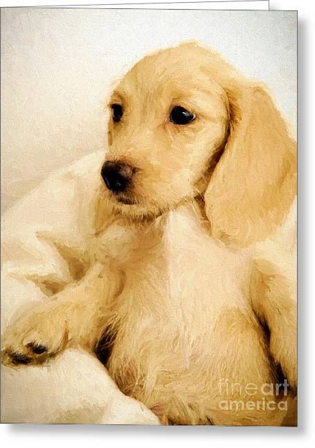 Puppies Drawings Greeting Cards - Dog puppy 1 Greeting Card by Evgeni Nedelchev