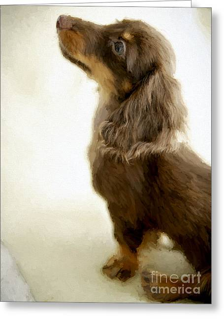 Puppies Drawings Greeting Cards - Dog puppy 11 Greeting Card by Evgeni Nedelchev