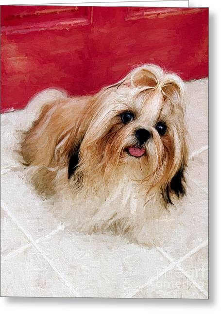 Puppies Drawings Greeting Cards - Dog puppy 4 Greeting Card by Evgeni Nedelchev