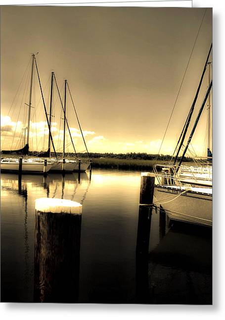 Dog River Marina Greeting Card by Gulf Island Photography and Images