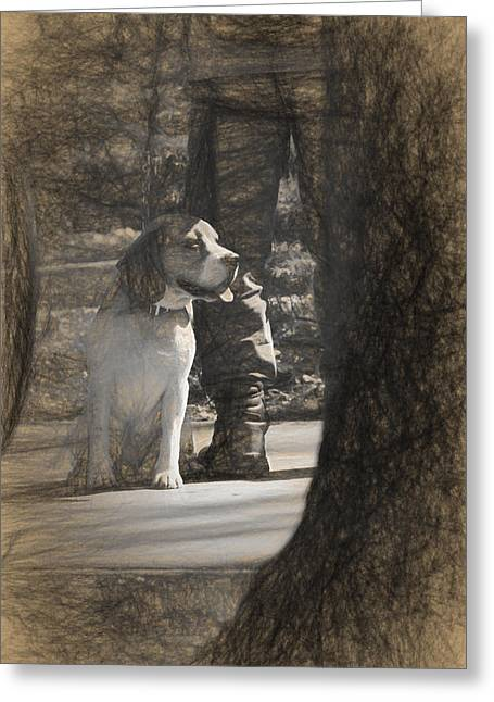 Hunting Bird Greeting Cards - Dog taking a break Greeting Card by Adrian Bud