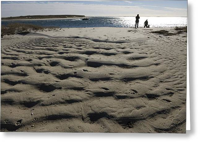 Chatham Greeting Cards - Dog Walkers On Sandy Beach In Chatham Greeting Card by Keenpress