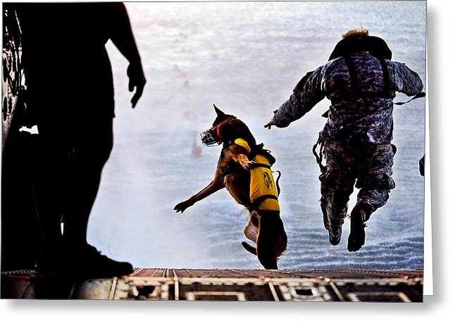 Chinook Greeting Cards - Military Working Dog Greeting Card by Tech Sgt Manuel J Martinez