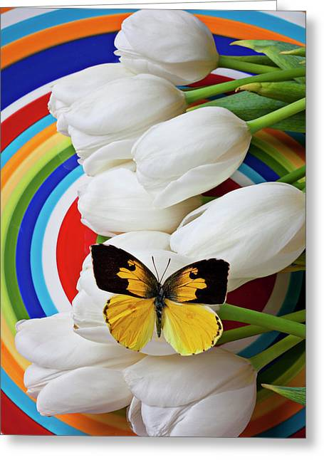 White Tulip Greeting Cards - Dogface butterfly on white tulips Greeting Card by Garry Gay