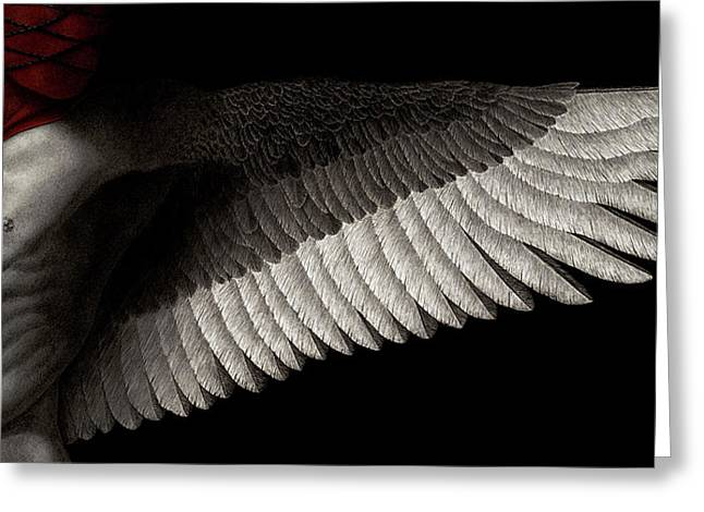 Muscular Greeting Cards - Dogma Greeting Card by Pat Erickson