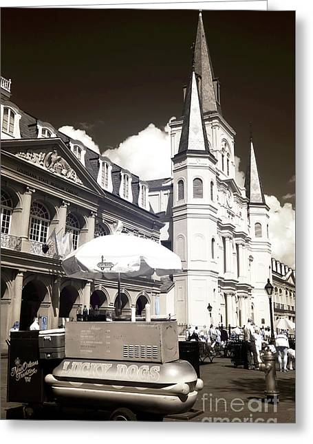 Dogs In The Square Infrared Greeting Card by John Rizzuto