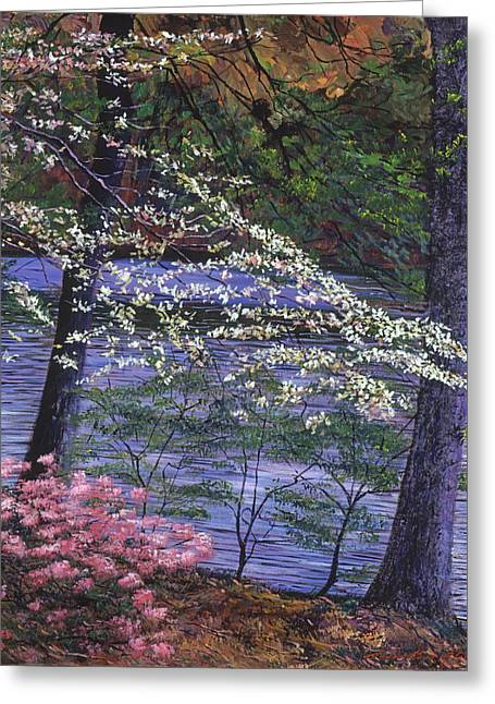 Nature Greeting Cards - DOGWOOD and AZALEA BLOOMS Greeting Card by David Lloyd Glover