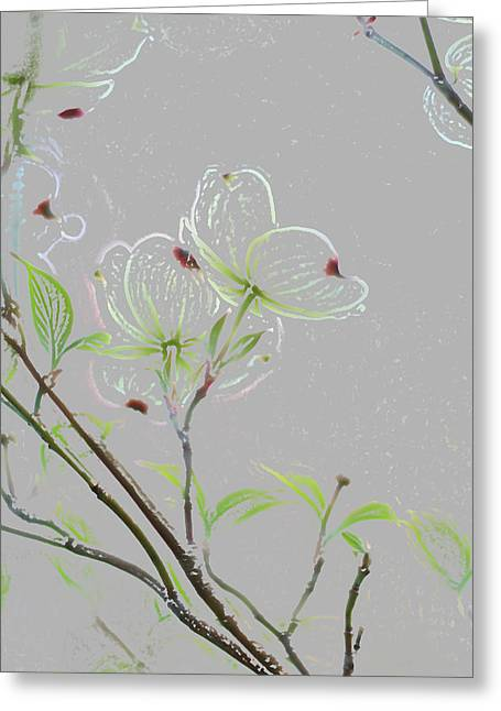 Indiana Dogwood Trees Greeting Cards - Dogwood Flowers Greeting Card by Andrea Kappler
