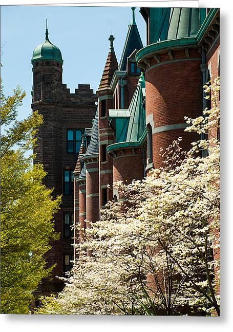 Robert Ford Greeting Cards - Dogwood on Yale University Campus Greeting Card by Robert Ford