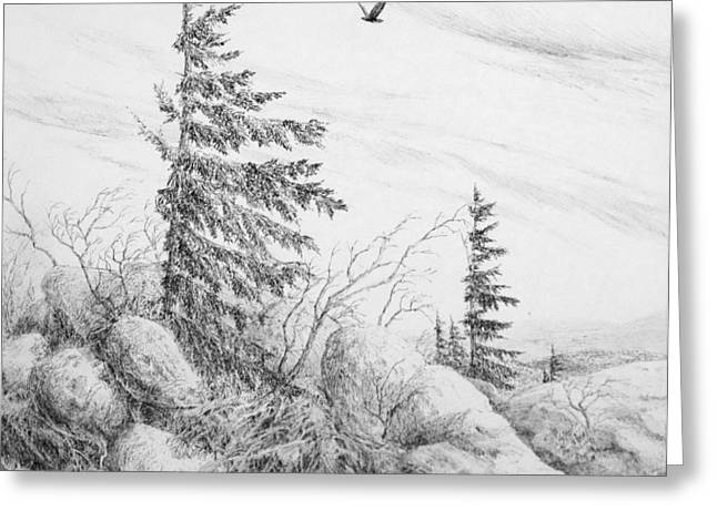 Allegheny Drawings Greeting Cards - Dolly sods- Looking Northward Greeting Card by Steve Mountz