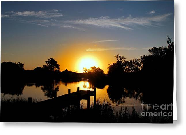 Dolphin Cove Sunrise Greeting Card by Benanne Stiens