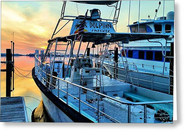 Blue Sailboats Greeting Cards - Dolphin Cruises Greeting Card by JC Findley