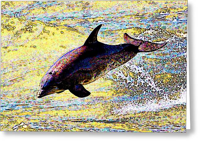 Dolphin Greeting Card by John Collins