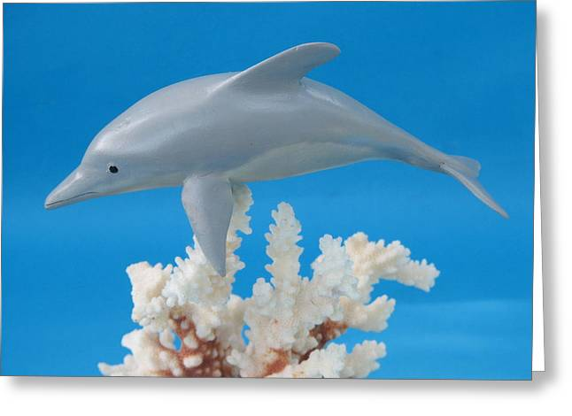 Woodcarving Sculptures Greeting Cards - Dolphin on Coral Greeting Card by Jack Murphy