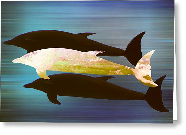 Pod Mixed Media Greeting Cards - Dolphin Pod Greeting Card by Sharon Lisa Clarke