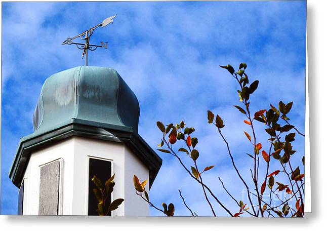 Weathervane Greeting Cards - Dome Top Weathervane  Greeting Card by Don Baker