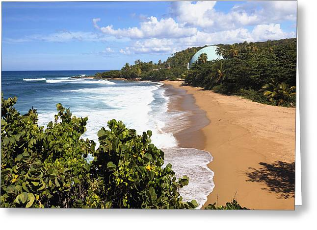 Rincon Greeting Cards - Domes Beach Rincon Puerto Rico Greeting Card by George Oze