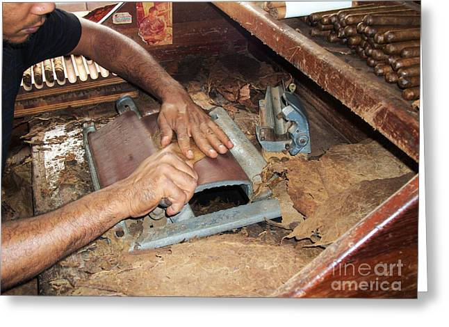 Dominican Greeting Cards - Dominican Cigars Made by Hand Greeting Card by Heather Kirk