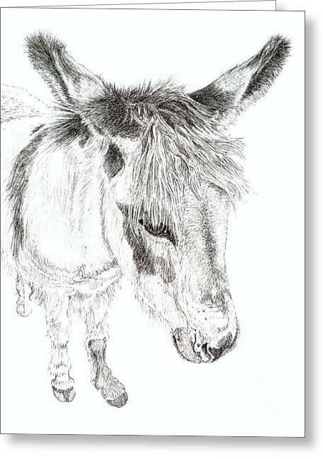Donkey 3 Greeting Card by Keran Sunaski Gilmore