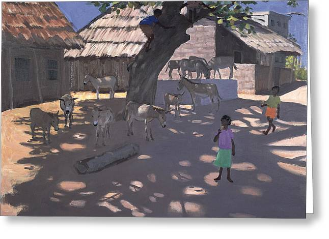 Donkeys Lamu Kenya Greeting Card by Andrew Macara