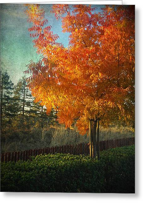 Don't Ever Let Go Greeting Card by Laurie Search