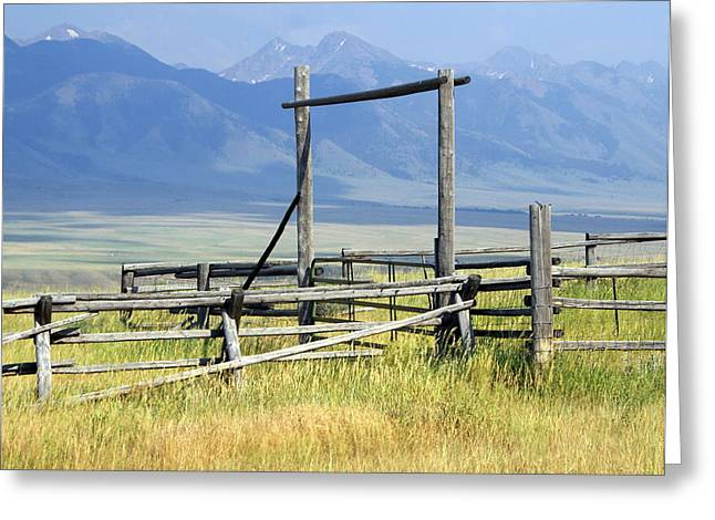 Don't Fence Me In Greeting Card by Marty Koch
