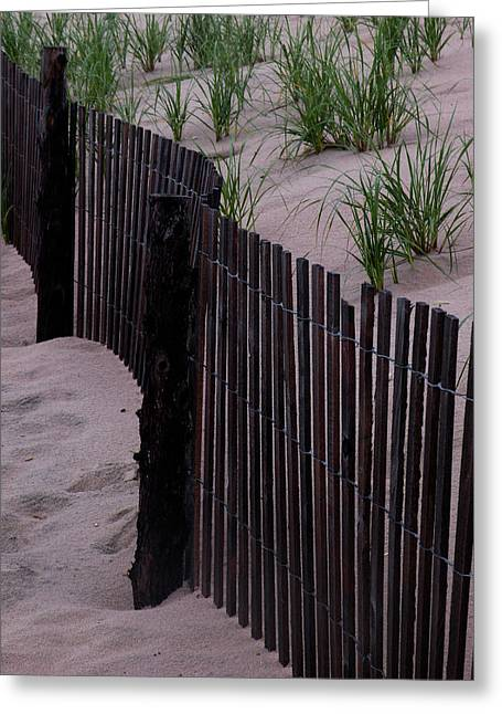 Sand Fences Greeting Cards - Dont Fence Me In Greeting Card by Trish Tritz