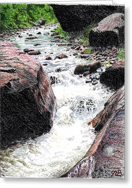 Prisma Colored Pencil Drawings Greeting Cards - Dont Get Swept Away Greeting Card by Nils Beasley