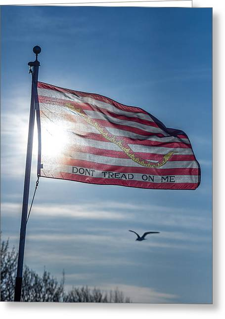 Snake Flag Greeting Cards - Dont Tread On Me Greeting Card by Chris Bordeleau