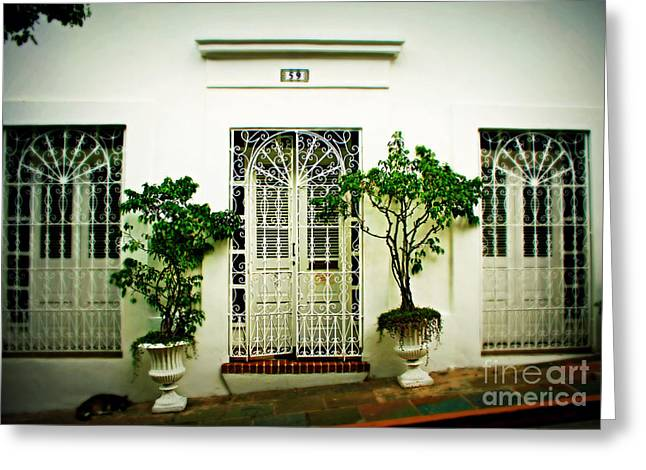 Old San Juan Greeting Cards - Door 59 Greeting Card by Perry Webster