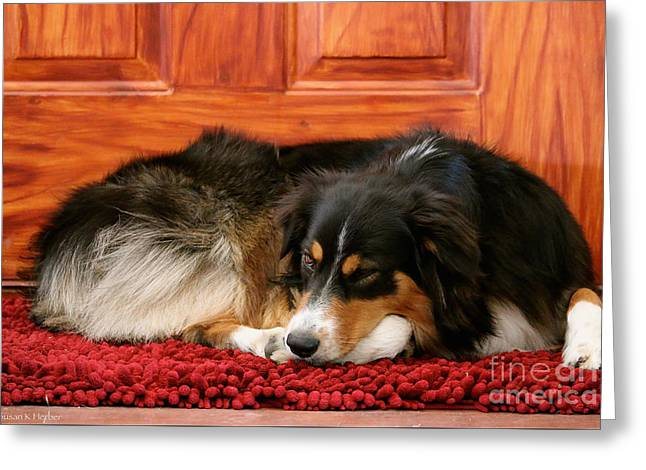 Working Dog Greeting Cards - Door Keeper Greeting Card by Susan Herber