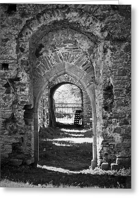 Church Ruins Greeting Cards - Doors at Ballybeg Priory in Buttevant Ireland Greeting Card by Teresa Mucha