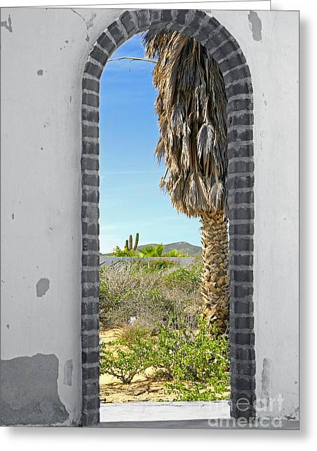 Doorway To The Desert Greeting Card by Cheryl Young