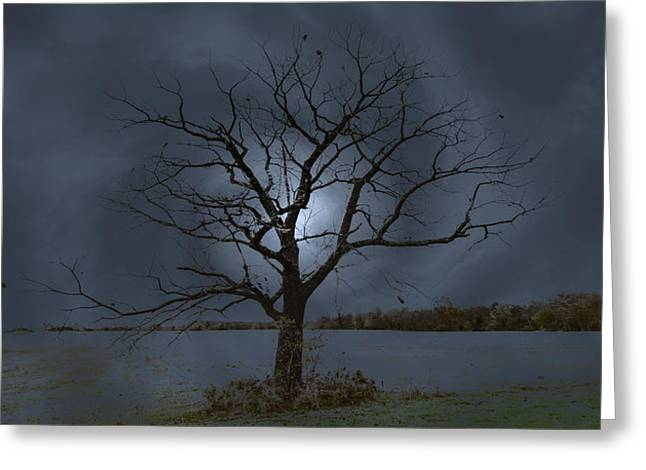 Moonglow Greeting Cards - Dormancy and Expectancy Greeting Card by John Bailey