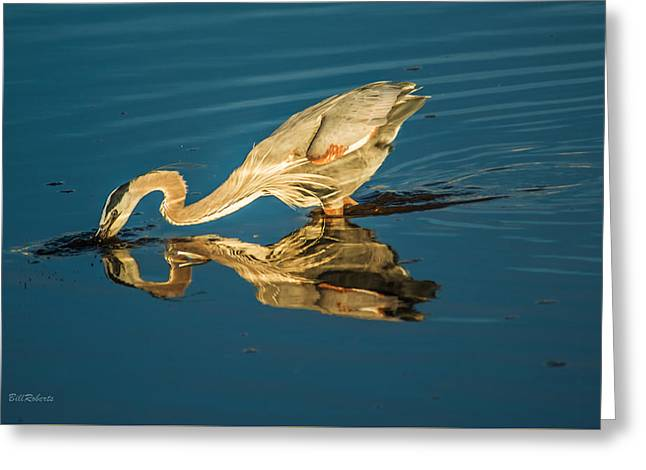 Double Dipper Greeting Card by Bill Roberts